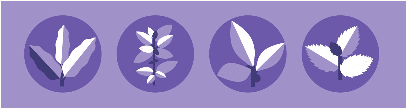 Icons of 4 essential oils